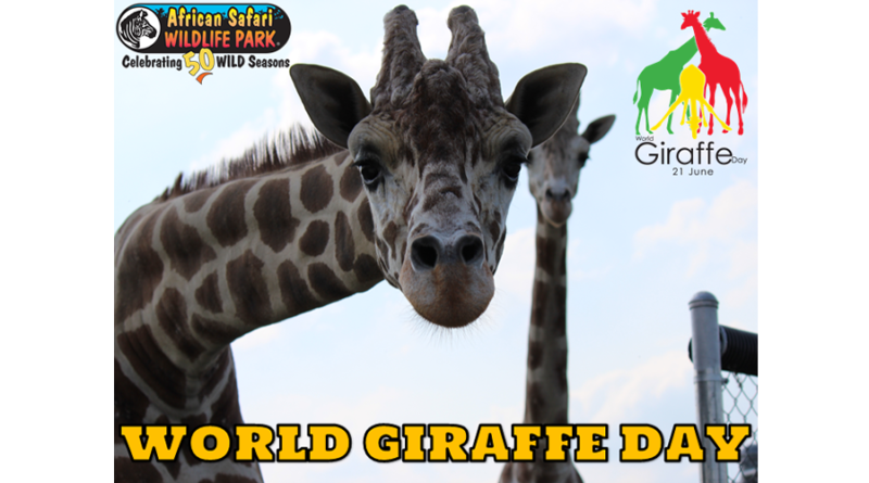 World Wide Giraffe Celebration