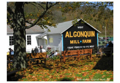 48th Annual Algonquin Mill Fall Festival