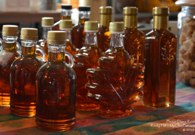OHIO MAPLE SYRUP and PANCAKE EVENTS